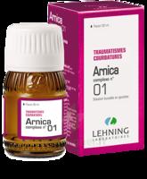 Lehning Arnica Complexe N° 1 Solution Buvable En Gouttes Fl/30ml à SAINT-GERMAIN-DU-PUY