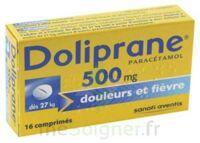 DOLIPRANE 500 mg Comprimés 2plq/8 (16) à SAINT-GERMAIN-DU-PUY