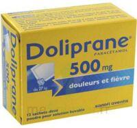 Doliprane 500 Mg Poudre Pour Solution Buvable En Sachet-dose B/12 à SAINT-GERMAIN-DU-PUY