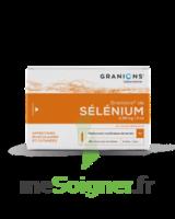 Granions De Selenium 0,96 Mg/2 Ml S Buv 30amp/2ml à SAINT-GERMAIN-DU-PUY