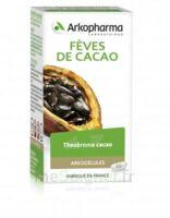 Arkogélules Cacao Gélules Fl/45 à SAINT-GERMAIN-DU-PUY