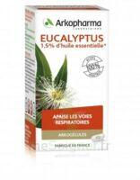 Arkogélules Eucalyptus Gélules Fl/45 à SAINT-GERMAIN-DU-PUY