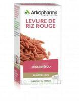 Arkogélules Levure de riz rouge Gélules Fl/150 à SAINT-GERMAIN-DU-PUY