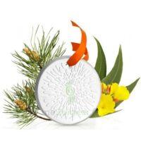 Puressentiel Diffusion Diffuseur Céramique galet médaillon pour Huiles Essentielles à SAINT-GERMAIN-DU-PUY