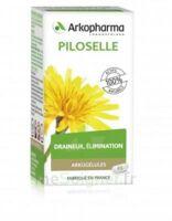Arkogélules Piloselle Gélules Fl/45 à SAINT-GERMAIN-DU-PUY