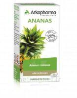 Arkogélules Ananas Gélules Fl/45 à SAINT-GERMAIN-DU-PUY
