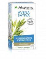 Arkogélules Avena Sativa Gélules Fl/45 à SAINT-GERMAIN-DU-PUY