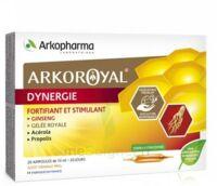 Arkoroyal Dynergie Ginseng Gelée Royale Propolis Solution Buvable 20 Ampoules/10ml à SAINT-GERMAIN-DU-PUY