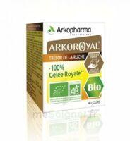 Arkoroyal 100% Gelée Royale Bio Gelée Pot/40g à SAINT-GERMAIN-DU-PUY
