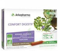 Arkofluide Bio Ultraextract Solution buvable confort digestif 20 Ampoules/10ml à SAINT-GERMAIN-DU-PUY