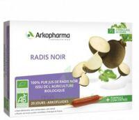 Arkofluide Bio Ultraextract Radis Noir Solution Buvable 20 Ampoules/10ml à SAINT-GERMAIN-DU-PUY
