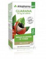 Arkogélules Guarana Bio Gélules Fl/45 à SAINT-GERMAIN-DU-PUY