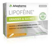 Lipofeine Graisse et Sucres Gélules B/60 à SAINT-GERMAIN-DU-PUY