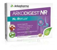 Arkodigest No Reflux Nr Comprimés à Croquer B/16 à SAINT-GERMAIN-DU-PUY