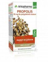 Arkogélules Propolis Bio Gélules Fl/45 à SAINT-GERMAIN-DU-PUY
