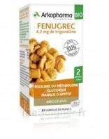 Arkogélules Fenugrec Bio Gélules Fl/40 à SAINT-GERMAIN-DU-PUY