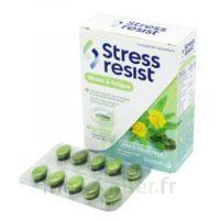 Stress Resist Comprimés Stress & Fatigue B/30 à SAINT-GERMAIN-DU-PUY
