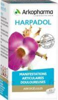 ARKOGELULES HARPAGOPHYTON Gélules Fl/150 à SAINT-GERMAIN-DU-PUY