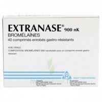 EXTRANASE 900 nK, comprimé enrobé gastro-résistant à SAINT-GERMAIN-DU-PUY