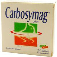 Carbosymag Gél 2plq/12+12 à SAINT-GERMAIN-DU-PUY