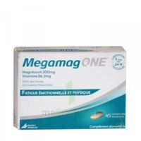 megamag one à SAINT-GERMAIN-DU-PUY