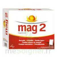 MAG 2, poudre pour solution buvable en sachet à SAINT-GERMAIN-DU-PUY