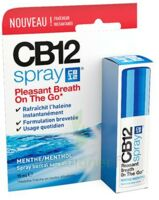 CB 12 Spray haleine fraîche 15ml à SAINT-GERMAIN-DU-PUY