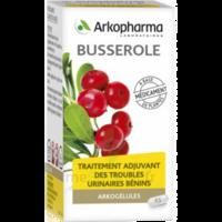 Arkogelules Busserole Gélules Fl/45 à SAINT-GERMAIN-DU-PUY