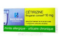 Cetirizine Biogaran Conseil 10 Mg, Comprimé Pelliculé Sécable à SAINT-GERMAIN-DU-PUY