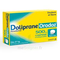 Dolipraneorodoz 500 Mg, Comprimé Orodispersible à SAINT-GERMAIN-DU-PUY