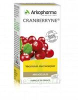Arkogélules Cranberryne Gélules Fl/45 à SAINT-GERMAIN-DU-PUY
