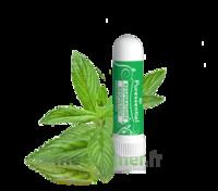 PURESSENTIEL RESPIRATOIRE Inhalation nasal 19 huiles essentielles à SAINT-GERMAIN-DU-PUY