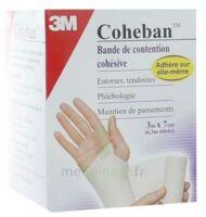 COHEBAN, blanc 3 m x 7 cm à SAINT-GERMAIN-DU-PUY
