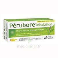 Perubore Caps Inhalation Par Vapeur Inhalation Plq/15 à SAINT-GERMAIN-DU-PUY