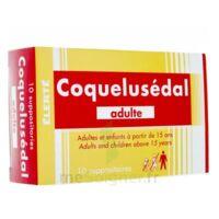 COQUELUSEDAL ADULTES, suppositoire à SAINT-GERMAIN-DU-PUY