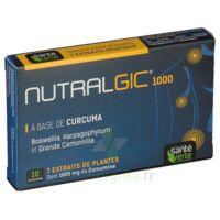 Nutralgic Comprimés Inflammations B/10 à SAINT-GERMAIN-DU-PUY