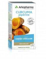 Arkogelules Curcuma Pipérine Gélules Fl/45 à SAINT-GERMAIN-DU-PUY