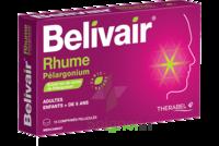 Belivair Rhume Pelargonium Comprimés Pelliculés Plq/15 à SAINT-GERMAIN-DU-PUY