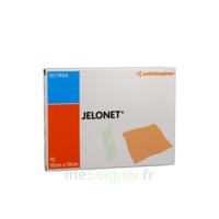 JELONET, 10 cm x 10 cm , bt 10 à SAINT-GERMAIN-DU-PUY