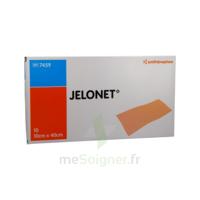 JELONET, 10 cm x 40 cm , bt 10 à SAINT-GERMAIN-DU-PUY
