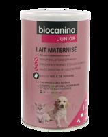 Biocanina Lait poudre maternisé B/400g à SAINT-GERMAIN-DU-PUY