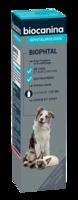 Biophtal Solution Externe 125ml à SAINT-GERMAIN-DU-PUY
