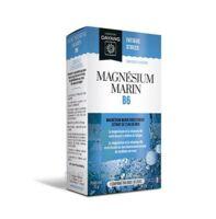 Dayang Magnésium Marin 300 Mg B6 30 Comprimés à SAINT-GERMAIN-DU-PUY