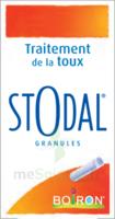 Boiron Stodal Granules Tubes/2 à SAINT-GERMAIN-DU-PUY