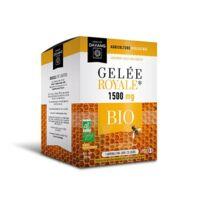 Dayang Gelée Royale 1500 Mg Bio 20 Ampoules à SAINT-GERMAIN-DU-PUY