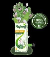 Phytoxil Toux Sans Sucre Sirop Adulte Enfant +2 Ans Fl/120ml à SAINT-GERMAIN-DU-PUY