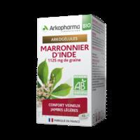 Arkogélules Marronnier D'inde Bio Gélules Fl/45 à SAINT-GERMAIN-DU-PUY