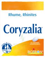 Boiron Coryzalia Comprimés Orodispersibles à SAINT-GERMAIN-DU-PUY