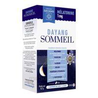 Dayang Sommeil Mélatonine 1 Mg 14 Comprimés à SAINT-GERMAIN-DU-PUY