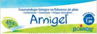 Boiron Arnigel Gel T/45g à SAINT-GERMAIN-DU-PUY
